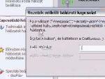 Zsinór nélküli hálózati védelem beállítása D-Link rooteren részlet