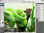 Hogyan csináljunk szamárfület Photoshopban? részlet