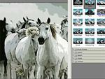 Hogyan alakítsuk át fotóinkat képregényessé Photoshopban? részlet