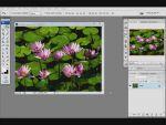 Adobe Photoshop: Kép beillesztése a szövegbe részlet
