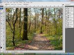 Adobe Photoshop: Nyári képből élethű ősziest részlet
