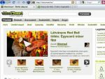 Pusztítsuk el az internetet - Egyszerű játék Firefox alatt részlet