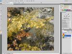 Adobe Photoshop: Őszies kép készítés tavasziból vagy nyáriból részlet