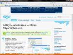 Skype: A program letöltése, telepítése és használata részlet