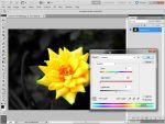 Adobe Photoshop: Háttér szürkítése egyszerűen részlet