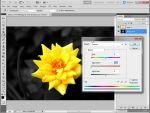 Adobe Photoshop: Háttér szürkítése egyszerűen Quick Selection Tool használatával részlet