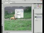 Adobe Photoshop CS5: Content-Aware Fill részlet